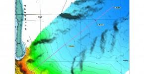 Pôle Biomarine Faratea